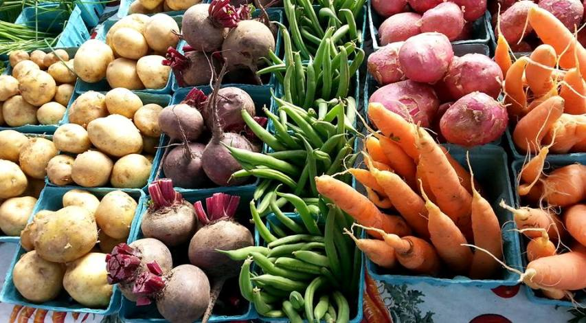 Growth Of Organic Food Industry: A Phenomenon To Stay