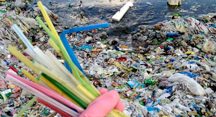 The Global Crisis Of Plastic Pollution And What Are The Ways To Curb
